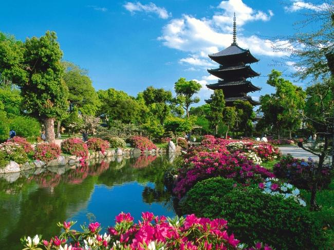 VIAJES A MARAVILLAS DE JAPON DESDE ARGENTINA - Buteler Viajes