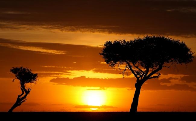 VIAJES A KENIA, NAIROBI y  JOHANNESBURGO desde Argentina - Buteler Viajes